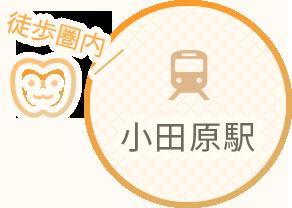 小田原駅徒歩圏内